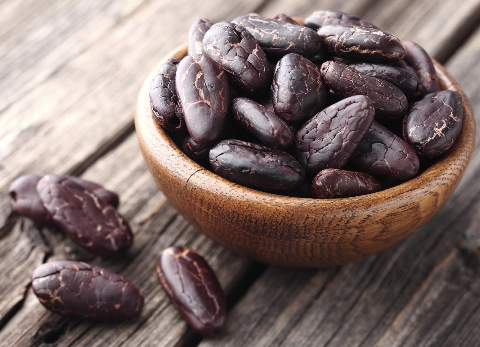 Renovarán más de 10 mil hectáreas de cacao