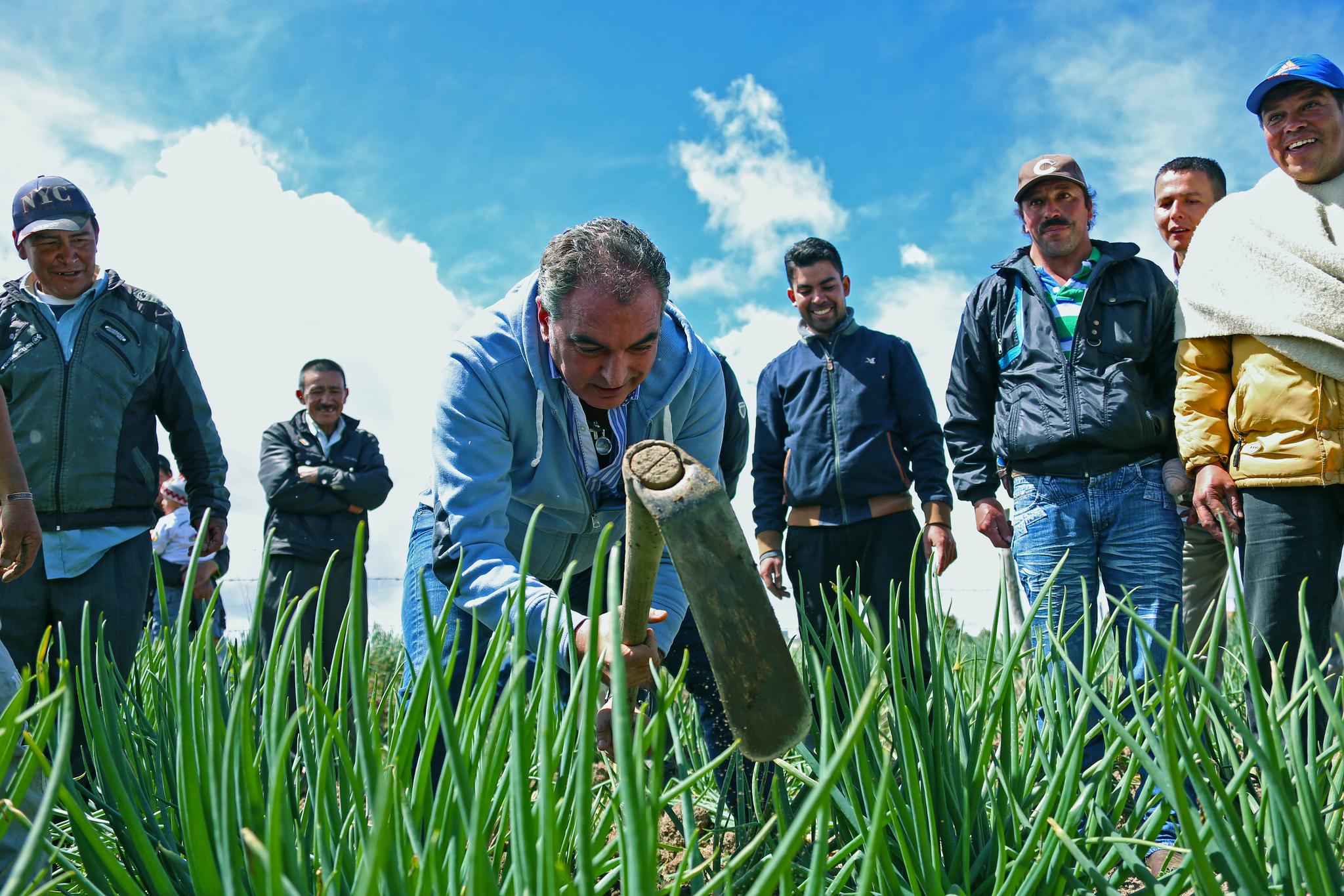 Ministro de Agricultura, Aurelio Irragori, prioriza formalización de tierras en el Huila