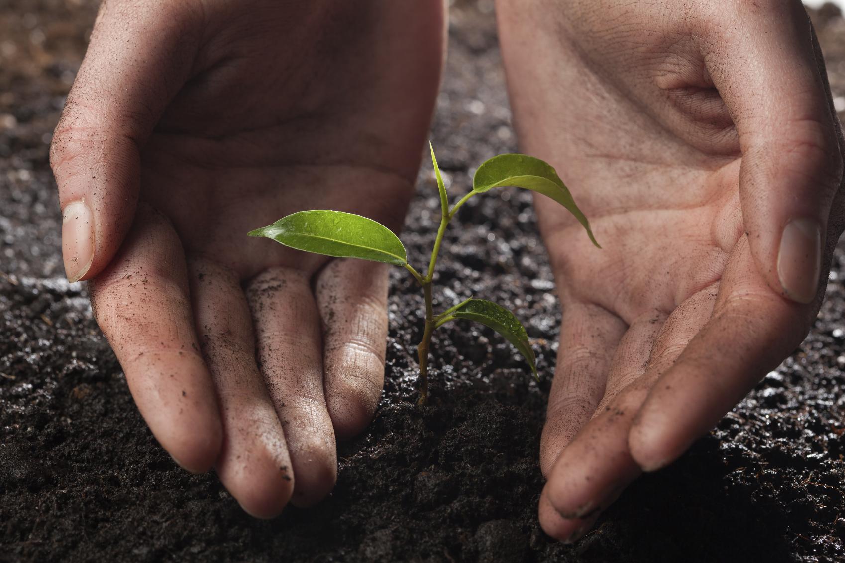 La restitución, una nueva oportunidad para los campesinos