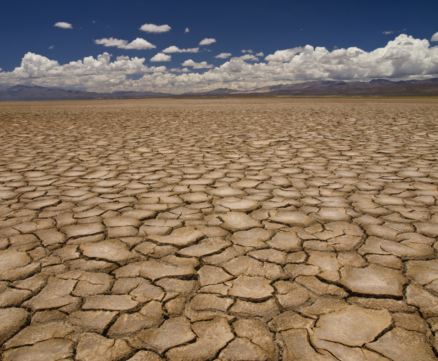El fenómeno de El Niño estaría presente hasta junio
