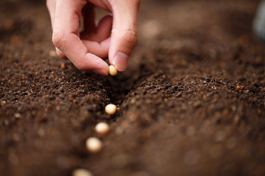 Colombia sigue siendo un país agropecuario