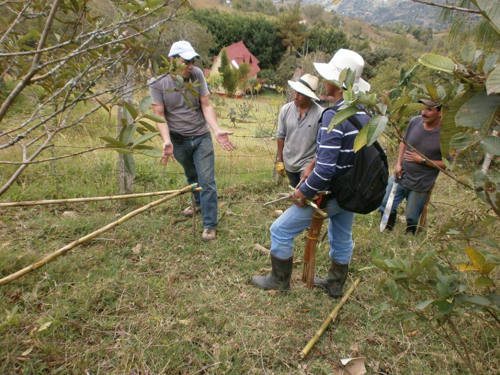 Gobierno no ha respondido al llamado de los campesinos del Catatumbo
