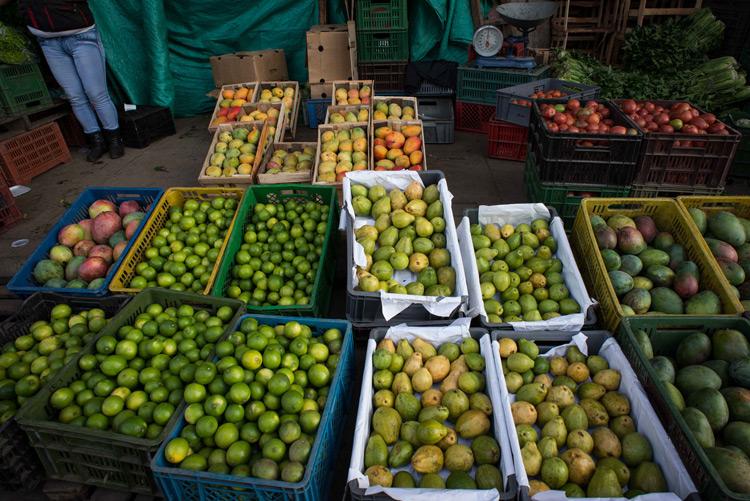 precios de alimentos siguen a la baja
